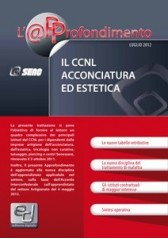 Il CCNL Acconciatura ed Estetica - ebook