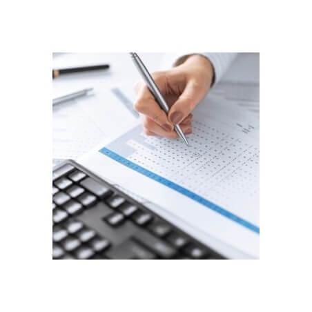 Budget Aziende Commerciali e Servizi per Reparti (4 Settori)