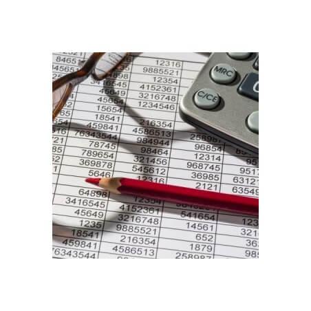 Budget Aziende Commerciali e Servizi per Reparti (8 Settori)