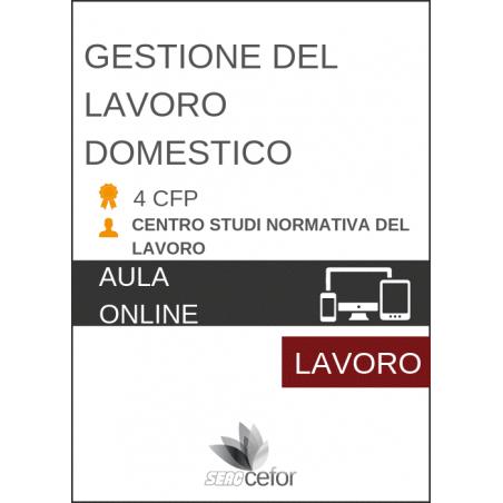Gestione del lavoro domestico 2019