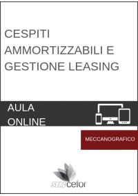 Cespiti Ammortizzabili e Gestione Leasing - CORSO MECCANOGRAFICO