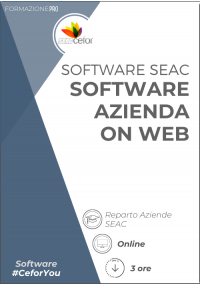 Software SEAC - Azienda On Web 2021