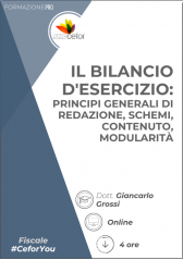 Il Bilancio D'esercizio: Principi Generali Di Redazione, Schemi, Contenuto, Modularità