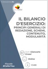 Il Bilancio D'esercizio: Principi Generali Di Redazione, Schemi, Contenuto, Modularità - Pack