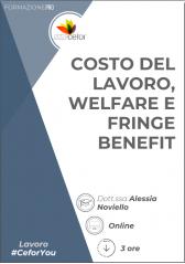 Costo Del Lavoro, Welfare E Fringe Benefit