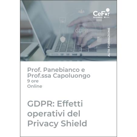 GDPR: Effetti operativi del Privacy Shield, alla luce della sentenza della Corte di Giustizia Europea e della Brexit