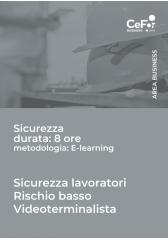 Corso Sicurezza - Lavoratori Rischio Basso - Videoterminalista (8 Ore)
